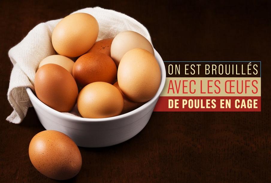 Les œufs de poules élevées en cage, c'est fini chez Monop'