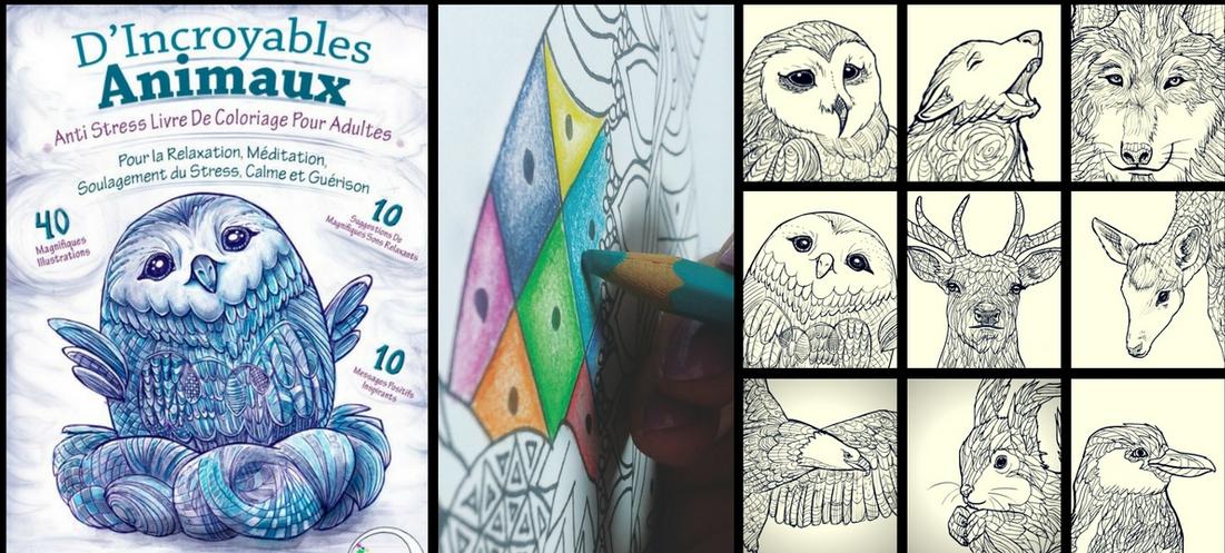 Anti-Stress le livre de coloriage pour les adultes, Ed.Relaxation4me