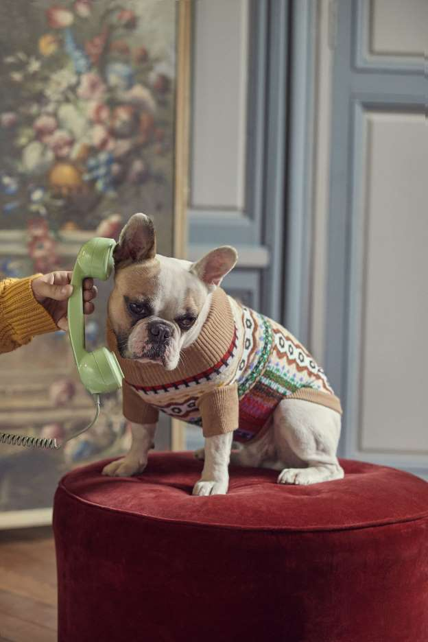 Eric Bompard dévoile une capsule qui a du chien !