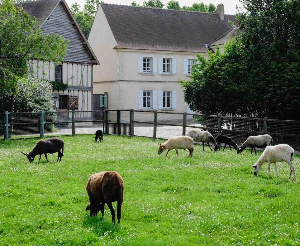 Bol d'air à La Ferme Départementale des Chanteraines, Villeneuve-la-Garenne (92)