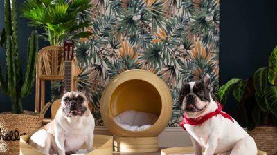 Miliboo lance sa collection de mobilier pour animaux